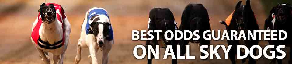 Betfred - Greyhound Racing - Best Odds Guaranteed