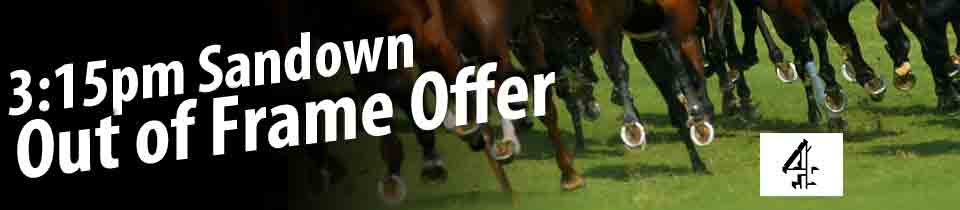 Sandown Horse Offer